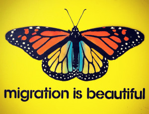 migration-is-beautiful